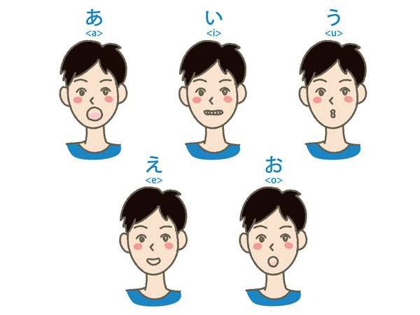 母音を発声する際の口の形